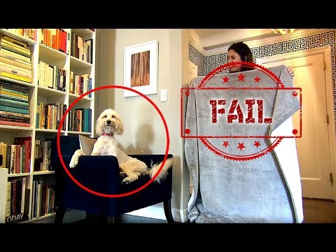 What the Fluff Dog Challenge Fail Videos - Try not to Laugh