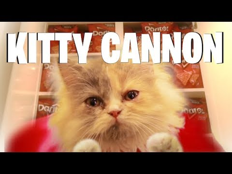 Kitty Cannon FAIL