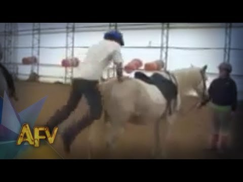 Epic Horse Jump Fail | Animal Fail | AFV